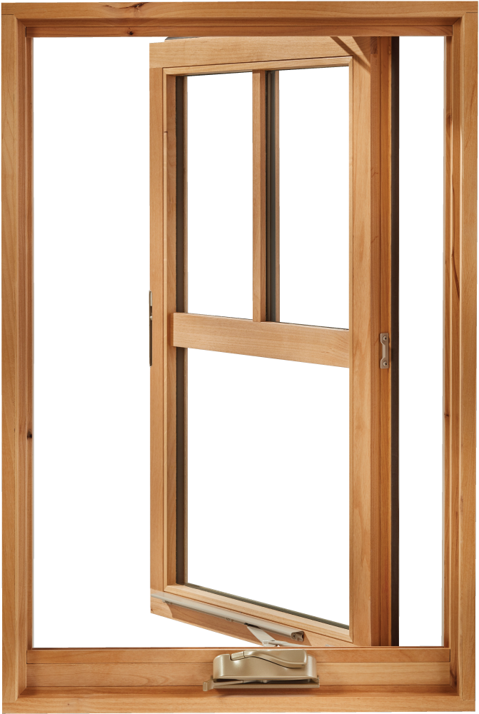 Open The Possibilities With Our Cat Windows